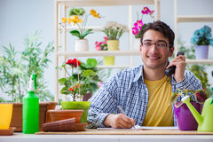 The young man florist working in a flower shop Royalty Free Stock Photo