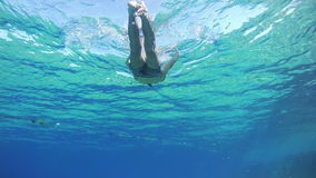 Young Man Free Dives Snorkeling and Floating Through the Frame, Underwater View in Red Sea, Egypt stock video footage