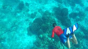 Young Man Freediving Deep in Clear Blue Water. Snorkeling Guy HD Underwater GoPro Slow Motion. Similan Island, Thailand. stock footage