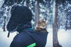 Young man in a fur hat with a tabby color kitten in the hood of his jacket against the backdrop of the winter forest stock image