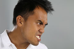 Young man furious Stock Images