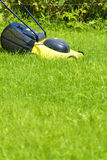 Young man gardener using lawn mower Royalty Free Stock Photo