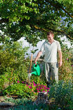 Young man gardener watering flowers in the garden Royalty Free Stock Photo