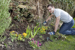 Young Man Gardening 1 Royalty Free Stock Photos