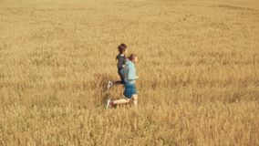 A young man and a girl with sports figures in sportswear are running along a cereal field. Aerial view. Summer day. In the background a blue sky with clouds stock footage