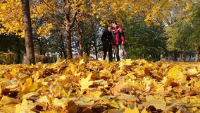 Young Man and girl walking in the autumn park. Happy young couple, man and woman smiling at each other and walking in the autumn park holding hands on the fallen stock footage