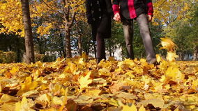 Young man and girl walking in the autumn park. Happy young couple, man and woman smiling at each other and walking in the autumn park holding hands on the fallen stock video footage