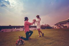 The young man gives flowers to the girl as a gift. The young men gives flowers to the girl as a gift and asks her to marry, in the football field green color Stock Image