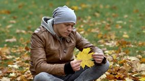 A young man sits on the grass and yellow maple leaves in the autumn park. Thoughtfully examines a large maple leaf stock video footage