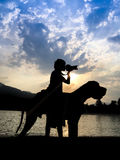 Young man with great dane at sunset. Royalty Free Stock Image