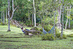 Young man in a hammock Stock Image
