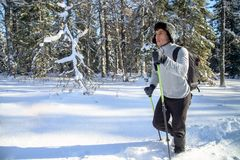 Young Man hiker with backpack trekking in winter snowy forest . Winter leisure, sports and activity. Young Man hiker with backpack trekking in winter snowy Royalty Free Stock Images