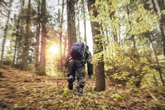 Young man hiking outdoor in the forest. Male guy hiking with blue bag in forest royalty free stock images