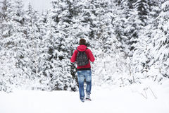 Young man hiking in wintry forest landscape Stock Images