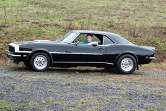 A young man in his 68 Camaro. Stock Image