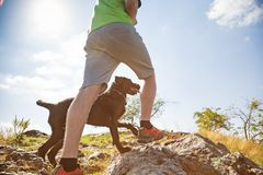 Young man with hir dog walking. Young man with his dog walking outdoor during summer day Stock Image