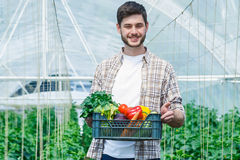 Young man holding a box of vegetables. Young man holding a box of vegetables in greenhouse Stock Photography