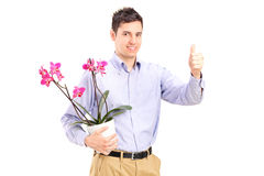 Young man holding flowerpot and giving thumb up Stock Photos