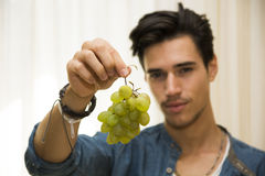 Young man holding a large delicious ripe bunch of grapes Royalty Free Stock Image