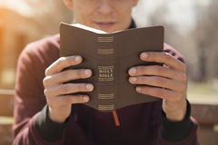 Young man holding and reading holy bible royalty free stock images