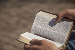 Young man holding and reading holy bible Stock Image