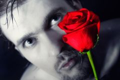 Young man holding a red rose Royalty Free Stock Image