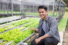 Beginning of a new life. Young man holding a small young green plant. new life concept royalty free stock photo