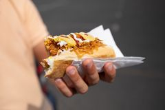 Handsome young man eating hot dog. stock images