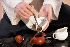 Young man holds a Chinese tea ceremony Stock Photography