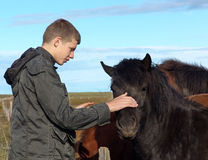 The young man and the horse 02. The young man near to the Icelandic horse stock photos