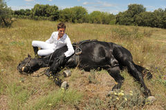 Young man and horse Royalty Free Stock Image