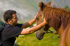 Young Man and Horse Stock Photo