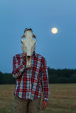 Young man with horse skull on his head at Royalty Free Stock Image