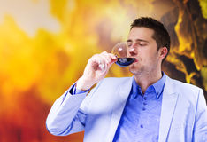 Free Young Man In A Bar Royalty Free Stock Photography - 60724887
