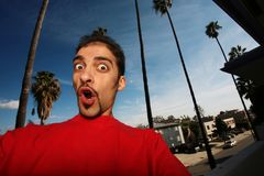 Free Young Man In California Royalty Free Stock Photography - 4239587