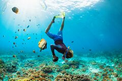 Free Young Man In Snorkelling Mask Dive Underwater Royalty Free Stock Image - 187247926