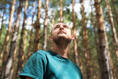 Young Man In The Woods Looking Up Royalty Free Stock Photo