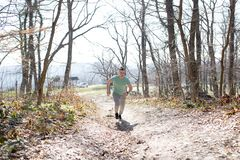 Young man jogging in forest. Exercise Stock Images