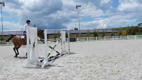 Young man jumping over barriers on horseback stock video footage