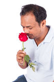 Young man kiss rose Stock Images
