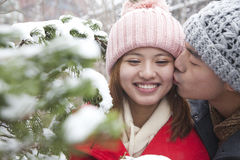 Young man kissing young woman in park in snow Royalty Free Stock Photography