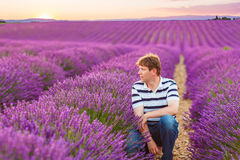 Young man in lavender fields, in Provence, France Stock Image
