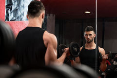 Young Man Lifting Dumbbell In Gym Stock Images