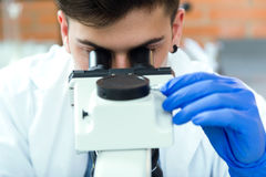 Young man looking through microscope in laboratory. Royalty Free Stock Image