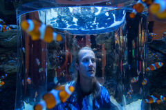 Young man looks at clown fish in a huge tank Stock Photos