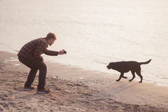 Young man make photo of dog. Young caucasian male walking with dog on the morning beach, sunset on the sea or ocean and man with black labrador puppy Stock Image