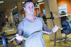 Young man making bar curl - workout routine Royalty Free Stock Photo