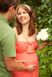 Young man meeting his pregnant wife Stock Photography
