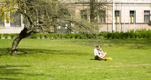 Young man with a merry dog have a rest in a city park Royalty Free Stock Photography