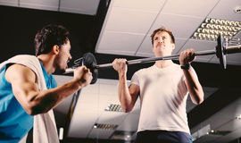 Young man motivating gym buddy during bicep exercise Stock Images